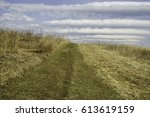Hillside Path Across Grassland...