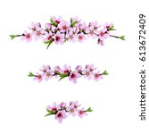 set of pink peach twigs line... | Shutterstock . vector #613672409