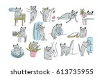 set of problem with cat... | Shutterstock .eps vector #613735955