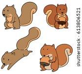 vector set of squirrel | Shutterstock .eps vector #613806521