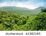 Panoramic Views Of Jungle...