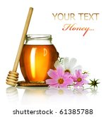 honey over white | Shutterstock . vector #61385788