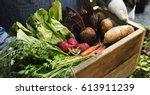 adult farmer man holding fresh... | Shutterstock . vector #613911239