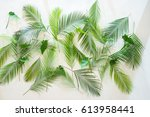 Decorative Green Leaf On The...