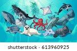 cartoon sea and ocean life... | Shutterstock .eps vector #613960925