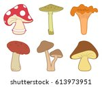 mushrooms vector set. different ... | Shutterstock .eps vector #613973951