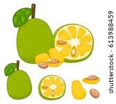 Jackfruit Set