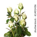 Bouquet Of Pale Roses  Isolate...