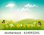 spring nature landscape... | Shutterstock .eps vector #614092241