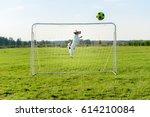 Dog As Amusing Goalkeeper Save...
