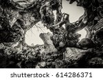 inside of a tree open after... | Shutterstock . vector #614286371