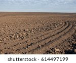 Field Plowed  Sown Cereals....