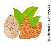 almonds with leaves  vector... | Shutterstock .eps vector #614499281