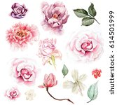 Watercolor Set With Peony ...