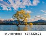 wanaka tree  lake wanaka at... | Shutterstock . vector #614522621