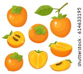 Bright Vector Set Of Colorful...
