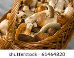 Basket With Edible Mushrooms....