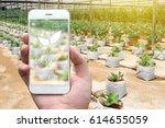 smart agriculture  farm  ... | Shutterstock . vector #614655059
