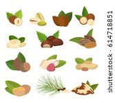 set of vector nuts isolated on... | Shutterstock .eps vector #614718851