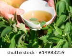 infusion of nettles in the cup... | Shutterstock . vector #614983259