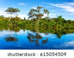 beautiful reflection of the... | Shutterstock . vector #615054509