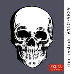 human skull. vector black and... | Shutterstock .eps vector #615079829