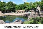 two playful elephants in a zoo | Shutterstock . vector #615099629