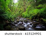short sands creek | Shutterstock . vector #615124901