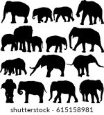 asian elephant silhouette...   Shutterstock .eps vector #615158981