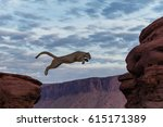 mountain lion jumping morning... | Shutterstock . vector #615171389