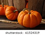 Rustic Autumn Still Life With...