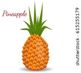 tropical healthy tasty  sweet... | Shutterstock .eps vector #615255179