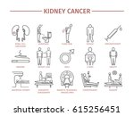 kidney cancer symptoms. causes. ... | Shutterstock . vector #615256451