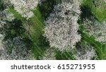 aerial top down view high... | Shutterstock . vector #615271955