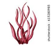 Watercolor Red Seaweed.close U...