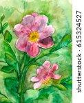 pink miracle | Shutterstock . vector #615324527