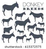 Donkey Breeds Icon Set. Animal...