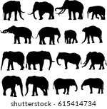african elephant and asian...   Shutterstock .eps vector #615414734