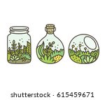 plants in terrariums set. moss  ... | Shutterstock .eps vector #615459671