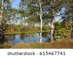 River Bank With Birch Trees At...