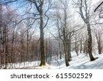 picturesque winter scene in the ... | Shutterstock . vector #615502529