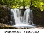 summer forest with small... | Shutterstock . vector #615502565