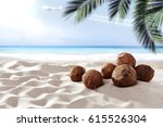Coconuts On Beach