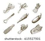 set of vegetables. harvesting | Shutterstock .eps vector #615527501