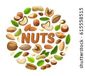 cartoon nuts round concept with ... | Shutterstock .eps vector #615558515
