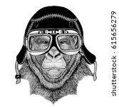 vintage images of gorilla... | Shutterstock . vector #615656279