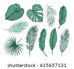 hand drawn vector illustration  ... | Shutterstock .eps vector #615657131