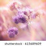 beautiful flowering in spring   ... | Shutterstock . vector #615689609