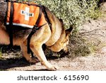 search and rescue canine unit... | Shutterstock . vector #615690