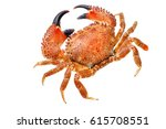 Red  Crab Isolated On White...